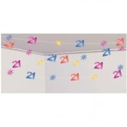 21st Birthday Party Ceiling Decoration