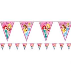 Disney Princess Dreaming Flag Banner