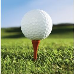 Golf Fanatic Party Napkins