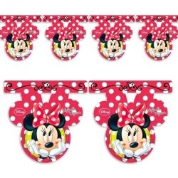 Minnie Mouse Daisy Party Flag Banner