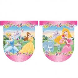 Disney Princess Journey Party Flag Banner