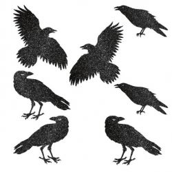 Black Glitter Party Decoration Raven Cutouts