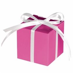 Bright Pink Party Favour Treat Boxes
