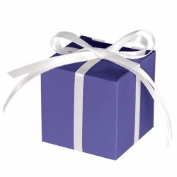 Purple Party Favour Treat Boxes
