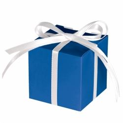 Blue Party Favour Treat Boxes