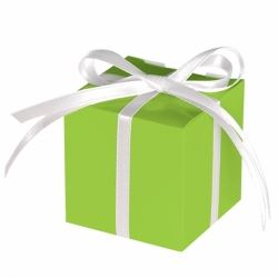 Kiwi Green Party Favour Treat Boxes