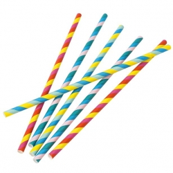 Rainbow Coloured Paper Drinking Straws